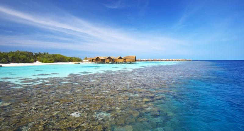 Ari Sud (Alifu Dhaalu Atoll)