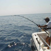 pesca alle mandive