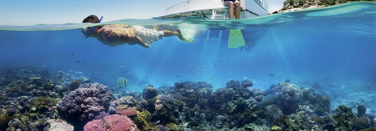 Snorkeling
